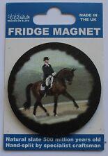 Horse  Equestrian  Dressage Fridge Magnet  Welsh Slate
