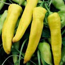 Pepper- Banana- 100 Seeds - 50 % off sale