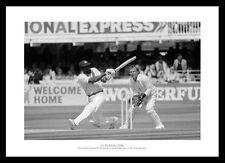 West Indies Cricket Memorabilia Photographs