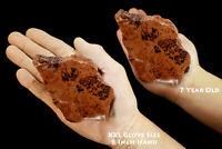 """Mahogany Obsidian 3 1/2"""" 8-12 Oz Rock Mineral Specimen Root Chakra Healing Stone"""