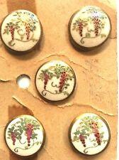 """Satsuma Buttons 3/4""""  (5).... On the Original Card"""