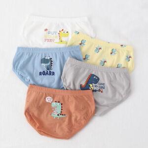 Pack 5 Kids Boys Underwear Cartoon Dinosaur Animals Cotton Full Briefs 2-18Y KLL
