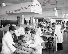 Photograph of a Autopsy Dissecting Room at the University Beirut Year 1927 8x10