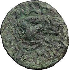 Magnesia ad Maeandrum in Ionia 350BC Rare Ancient Greek Coin Apollo Bull i31816
