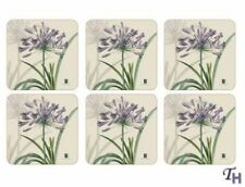 Pimpernel Floral Contemporary Coasters