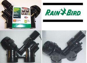 "Rainbird EASM-075 3/4"" Anti-Siphon Contractor Grade Sprinkler Valve"
