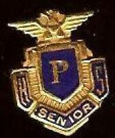 Vintage  P  HS Senior Pin Mini Miniature Badge  US Bald EAGLE