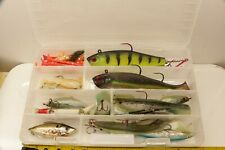Lot Misc Large Fish Fishing Lures With plastic Case Storm Lure and others