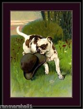 English Picture Print Bulldog Dog Puppy Dogs Puppies Hat Vintage Poster Art