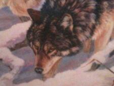 Print Three Hunting Wolves  Kerry Hansen Predators signed 451/500