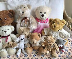 Bundle of 11 Soft Cuddly Teddy Bears. Brands Include Build a Bear, Paws Etc