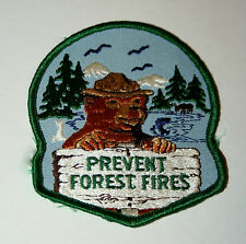 Vtg 70s Smokey The Bear Prevent Forest Fires Wooden Sign Dept Ag Patch New NOS