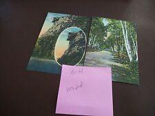 Vintage Cape Cod & Provincetown - Postcard Lot (19) - Unused