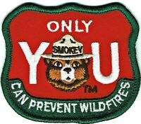 ⫸ Smokey Bear ONLY YOU CAN PREVENT WILDFIRES US Forest Embroidered Patch NEW dd