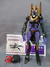 "Transformers Animated ""BLACKARACHNIA"" Deluxe Class 100% complete C9 shape"