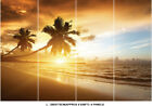 Beach Tropical Tree Sea Sunset Photo Wallpaper Wall Mural Home Bedroom Deco