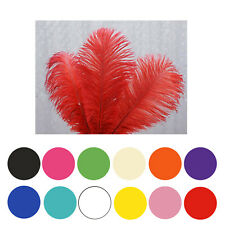 "12Pcs 13""-15"" Fabulous Natural Ostrich Feathers Plume for Wedding Centerpieces"