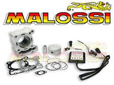 Kit Cylindre MALOSSI 166 APRILIA RS4 DERBI Senda 125 Terra 3115325