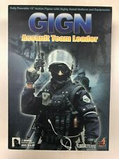 Hot Toys Military GIGN Assault Team Leader 12 inch Action Figure NEW