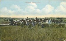 Agriculture C-1910 Farming Harvesting Canada Rumsey postcard 7972