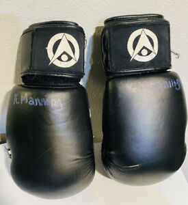 MMA Boxing Martial Arts Sparring 12 oz Gloves
