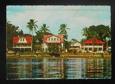 1970 View of River Surinam Albina Suriname Marowijne Co Postcard