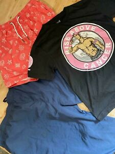 Wholesale Branded Clothing Job Lot Men's Used Grade A Mixed Summer Clearance UK