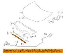 NISSAN OEM 13-15 Sentra Hood-Front Seal Gasket 658103SG0A