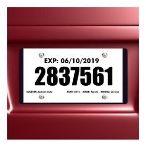Tear Resistant Temporary Tags For Car Dealers - Blank, Pkg of 100 - FREE SHIP