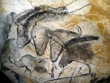 Horses:  The Cave Paintings of Lascaux :  Art Print