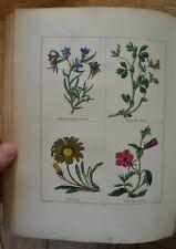 Maund's Botanic Garden Vol V (1st 1834).  24 superb hand coloured engravings