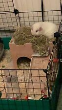 (MY ORIGINAL DESIGN)  CAGE SIZE TWO STOREY GUINEA PIG CASTLE /SHELTER