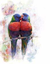 METAL MAGNET Rainbow Lorikeet Parrots Birds Digital Watercolor Art MAGNET