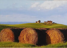 3 Original Photographs,Tuscany Italy by Stefano Caporali, Absolutely Beautiful!