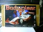 Scott Pruett Truesports Budweiser Racing poster