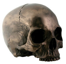 Bronze Skull Head Statue Sculpture Figurine - WE SHIP WORLDWIDE !
