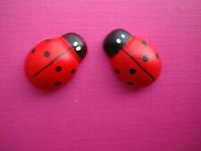 FUNKY RED LARGE LADY BIRD EARRINGS KITSCH RETRO NOVELTY CUTE INSECT GARDEN BUG
