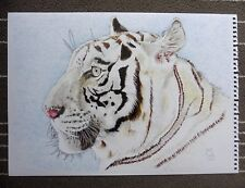 White Tiger Big Cat Nature Art Original Signed Ink Painting Drawing animal A3