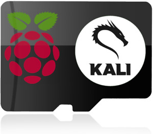 Kali Linux for Raspberry Pi micro SD Card Compatible with RPI 2, 3, 4 & 400