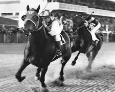 1938 Champion Racehorses SEABISCUIT vs WAR ADMIRAL Glossy 8x10 Photo Poster