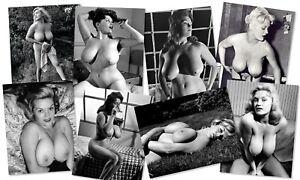 PAULA PAGE Set of EIGHT Big Boobs Classic Pin Ups 10 x 8 Photo Vintage Tits