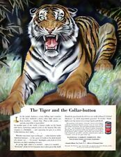 Paul Bransom Bengal Tiger EVEREADY Union Carbide COLLAR BUTTON 1940 Magazine Ad