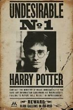 Harry Potter Poster Undesirable No. 1 61 x 91,5 cm