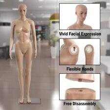 Plastic Detachable Mannequin Stand Torso Dress Form Full Body Female Mannequin