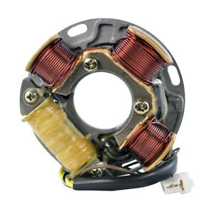 Stator For Ski-Doo Citation Alpine II Tundra Safari E R 250 377 503 1987-1990