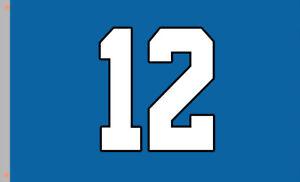 Seattle Seahawks 12 football team Memorable flag 90x150cm 3x5ft best banner 100D