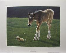"Glenn OLSON ""Pasture Patrol"" LTD art print Horse mint Certificate COA gopher"