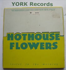 "HOTHOUSE FLOWERS - Easier In The Morning *BOX PACK* - Ex Con 7"" Single London"