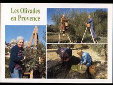 BARJOLS (83) OUVRIERS à la CUEILLETTE , RECOLTE d'OLIVES / OLIVADES en 1994