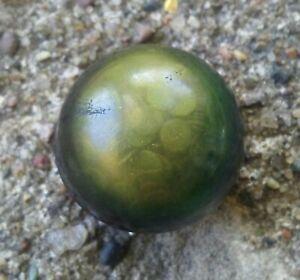 Antique Celluloid Dome Confetti Button.